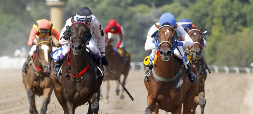 foto carreras de caballos